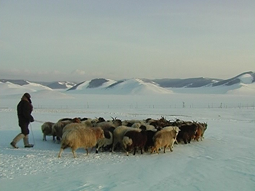 Life 4 - Warming Up in Mongolia