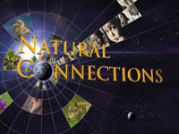 Natural Connections - image