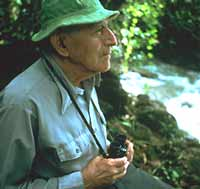 A Naturalist in the Rainforest - image