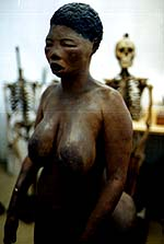 The Life and Times of Sara Baartman
