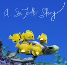 A Sea Turtle Story - image
