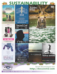 Sustainability Flyer flyer