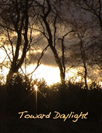 Toward Daylight - image