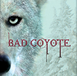 Bad Coyote - image