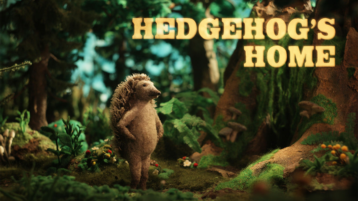 Hedgehogs Home - image