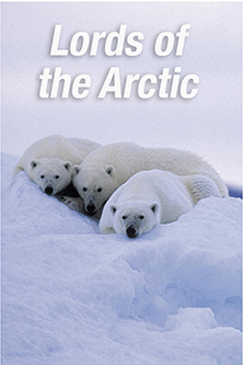 Lords of the Arctic - image